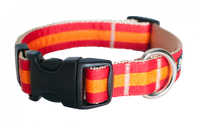 Prep School Dog Collar- Travis