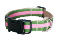 Prep School Dog Collar-Buffy