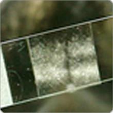 Microscope Slides, Cover Slips & Pippettes