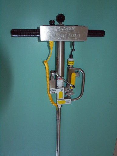 Reotemp Oxytemp probe