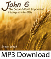 John 6:Second Most Important Passage in the Bible (MP3)*