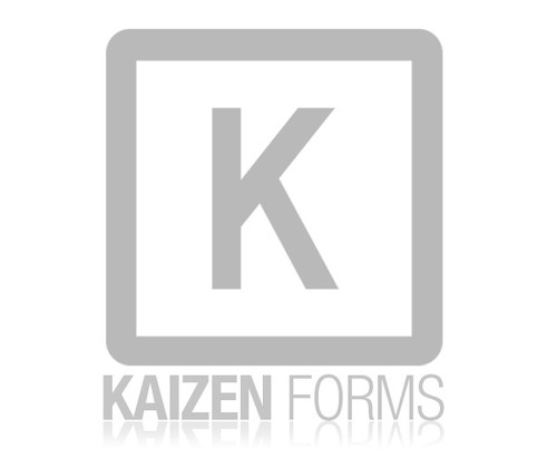 Quick & Easy Kaizen Forms