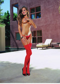 Dreamgirl Sheer Thigh Highs wIth Back Seam - Red