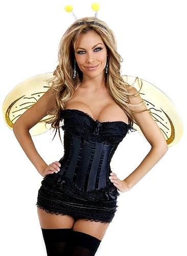 Daisy Corset 4Pc Queen Bee Costume