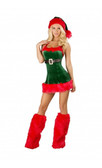 Roma Costume Santa's Envy