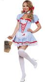 Starline Delightful Dorothy Costume