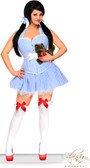 Daisy Corset Plus Size 3 PC Sexy Dorothy Costume