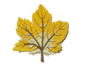 Yellow Brown Maple Leaf Embroidered Iron On Patch