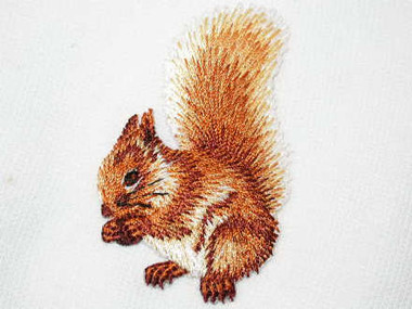 Squirrel w Acorn Embroidered Iron On Patch
