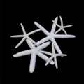 White Finger Star Fish (many sizes)  set of three