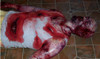 Homicide Victim, Mutilation Victim