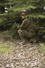 Woodland Terrain - Early Fall - Patrol