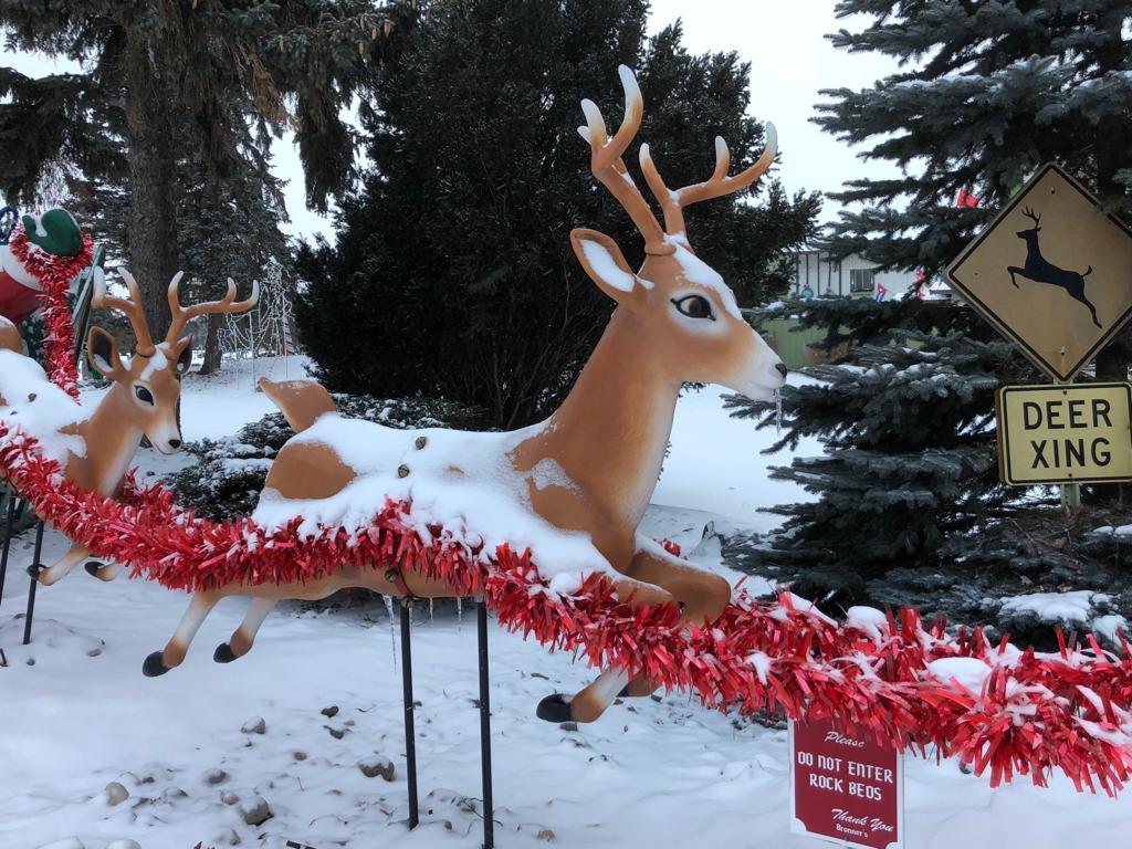 A Christmas Winter Wonderland