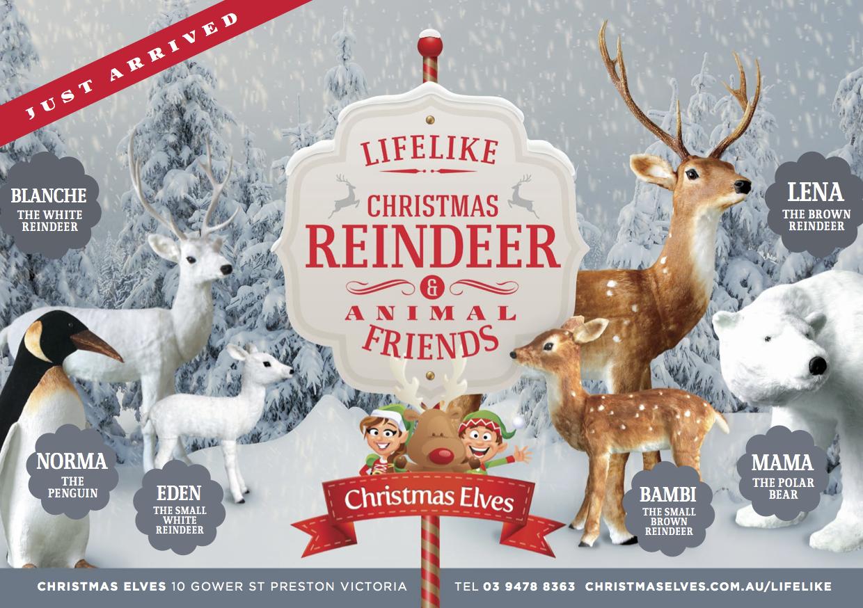 Christmas LifeLike Reindeer