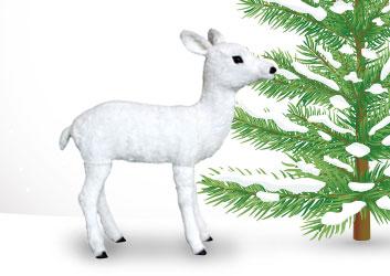 Eden baby reindeer