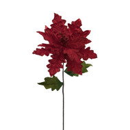 Poinsettia Red Stem