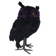 Black Feathered Owl