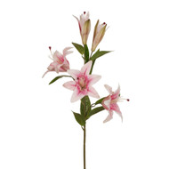 Pink Casablanca Lily - 99cm