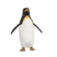 Animated Norma the Female Penguin