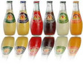 San Pellegrino Sparkling Water Assorted Flavors 24 Pack (355ml/12 oz)