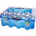 Kirkland Bottled Water Case 40 Pack (500 ml/16.9 oz)