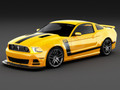 Ford Racing Boss 302 Laguna Seca Chin Splitter Kit (2013-14)