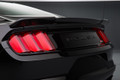 Roush Rear Spoiler - Raw (2015)