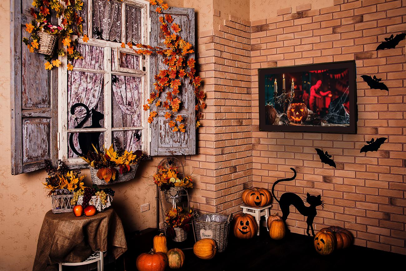 Outdoor TV Enclosure Unique Halloween Decor Ideas