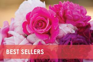 best-sellers-home.jpg