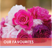 roses-categories-favourites-off.jpg