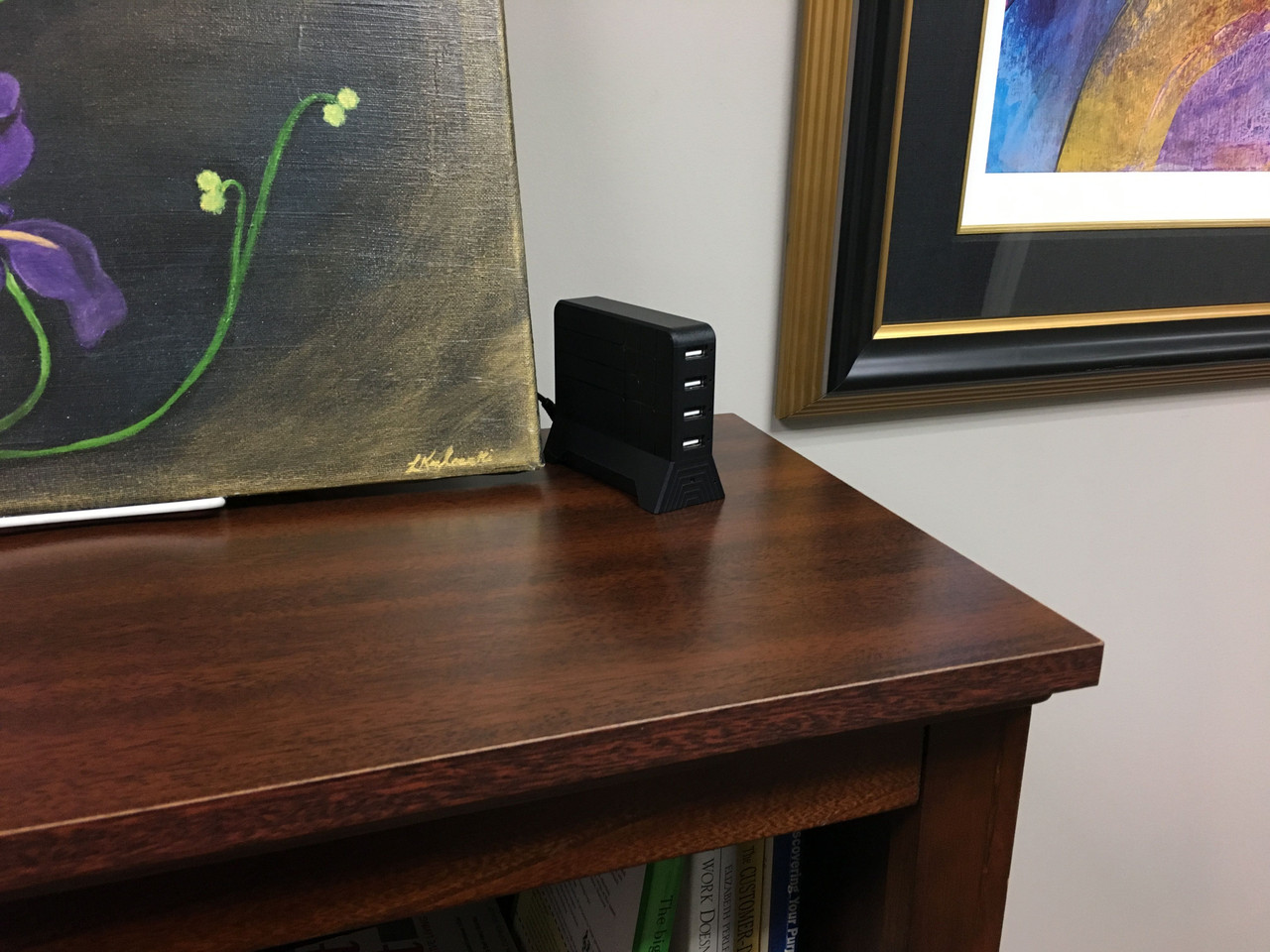 Lawmate PV-CS10i Covert Camera and DVR USB Charging Station On Bookshelf