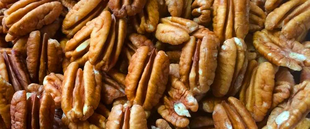 Free Shipping - Natchitoches Pecans Raw Pecan Halves