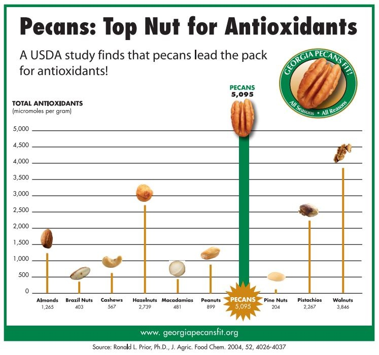 Pecan Health Benefits Antioxidants