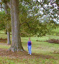 Natchitoches Pecan orchard with Matt and Julie Swanson