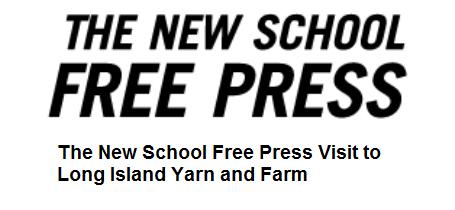 new-school-free-press-video.png