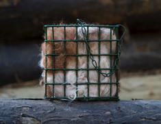 Nesting Fiber