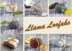 Llama Loofahs