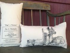 "Small Pillow with ""Page and Kareena"""