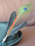 "Peacock Feather 11""-13"" (FEA257)"