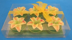 Six Lily Flower Shaped Tea Light Candles CDDLILY6
