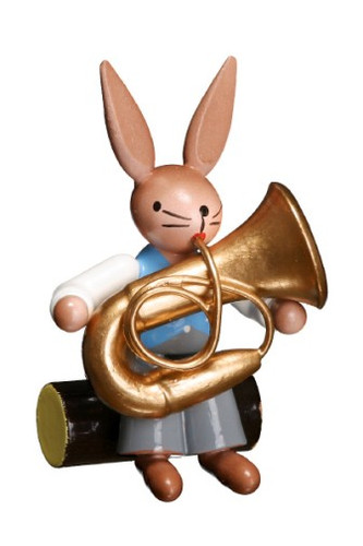 Bunny Playing Bass Horn