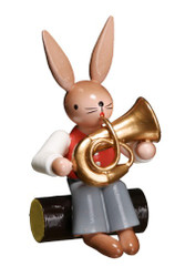 Bunny Playing Tuba