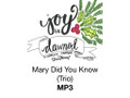 Mary Did You Know (Trio) MP3