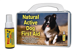nat-active-dog-hardshell-w-wp-cob.png