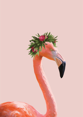 Lovely lady Flamingo