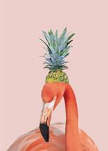 Meet the Pineapple Prince