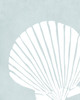 Fan Shell in Muted Gray