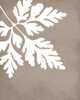 Mum leaf art print