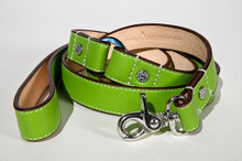 Chartreuse leash