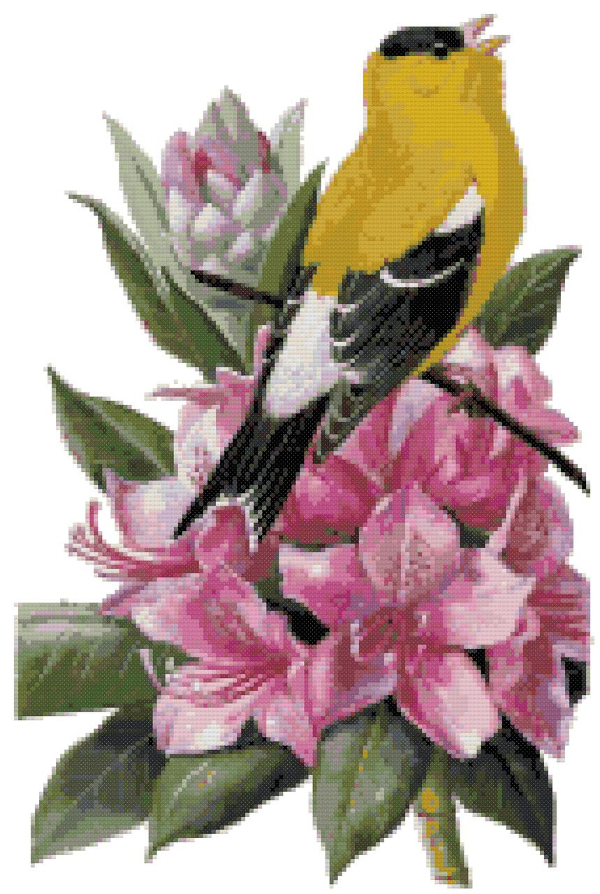 Washington State Bird And Flower Willow Goldfinch And Coast Rhododendron Counted Cross Stitch Pattern Boston Needleworks Scrapbooking
